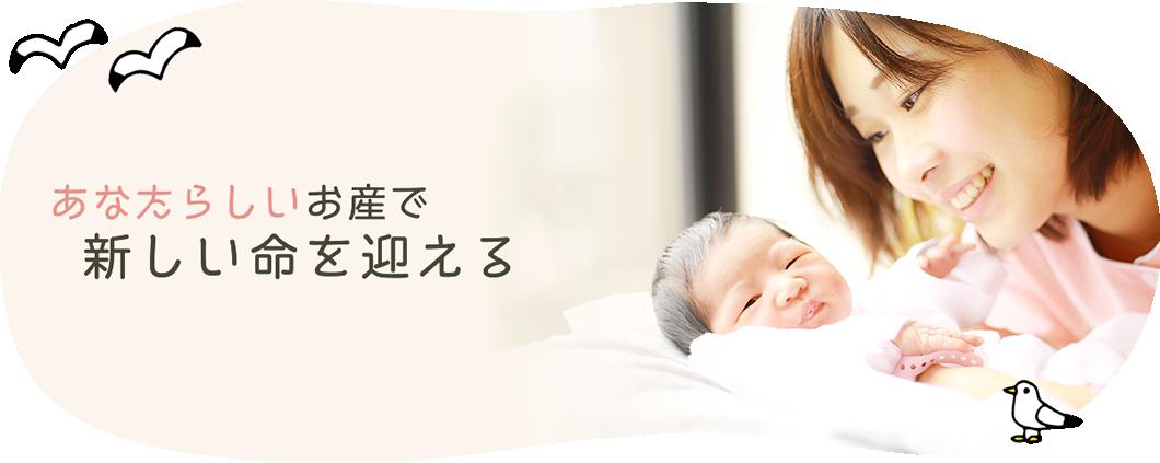 かもめブログ 横須賀市の助産院
